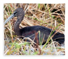 Glossy Ibis 123015 Fleece Blanket