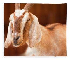 Goat Fleece Blanket