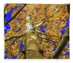 Golden Aspens In Grand Canyon Fleece Blanket