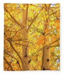 Golden Aspens In Grand Canyon, Vertical Fleece Blanket