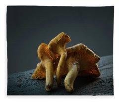 Golden Chanterelle Mushroom Fleece Blanket