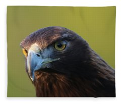 Golden Eagle 5151802 Fleece Blanket