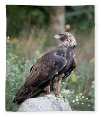 Golden Eagle On Rock 92515 Fleece Blanket