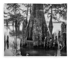 Grand Lake Cypress Fleece Blanket