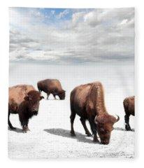 Grazing Buffalo Fleece Blanket