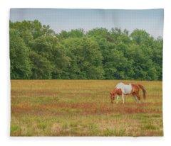Grazing Paint Horse Fleece Blanket