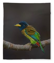 Beautiful Birds Photographs Fleece Blankets