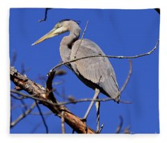 Great Blue Heron Strikes A Pose Fleece Blanket