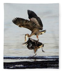 Great Blue Herons Territorial Dispute Fleece Blanket
