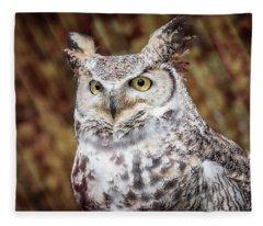 Great Horned Owl Portrait Fleece Blanket