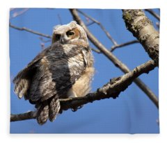 Great Horned Owlet 42915 Fleece Blanket