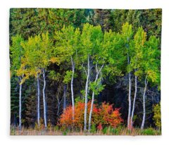 Green Aspens Red Bushes Fleece Blanket