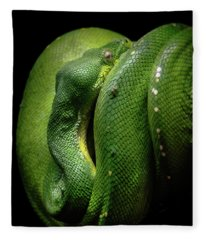 Green Tree Boa Fleece Blanket
