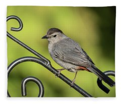 Grey Catbird 2019-1 Fleece Blanket