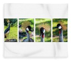 Grey Crowned Crane Gulf Shores Al Collage 1 Fleece Blanket