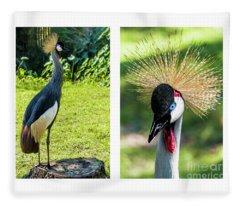 Grey Crowned Crane Gulf Shores Al Collage 8 Diptych Fleece Blanket