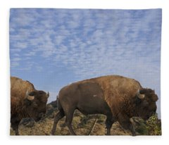 Group Of Bison Walking Against Rocky Mountains  Fleece Blanket