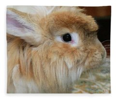 Hairy Rabbit Fleece Blanket