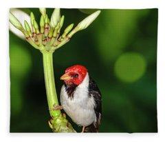 Happy Valentine's Day Bird Fleece Blanket