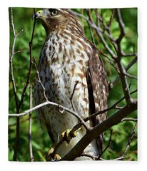 Hawk Brings Thrills Fleece Blanket