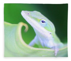 Hello, Anole. 2 Fleece Blanket