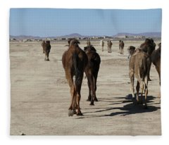 Herd Of Camels Crossing The Highway Near  Rissani Fleece Blanket