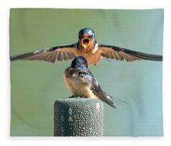 Hey, Babe, Let's Rock N Roll.  Barn Swallows Fleece Blanket