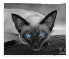 Hey There Blue Eyes - Siamese Cat Fleece Blanket
