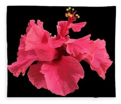 Hibiscus Pink In Black Fleece Blanket