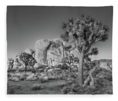 Hidden Valley Rock Fleece Blanket
