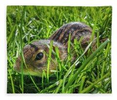 Hiding In The Grass Fleece Blanket