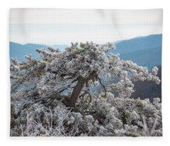 Hoarfrost In The Blue Ridge Mountains Fleece Blanket