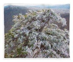 Hoarfrost On Trees Fleece Blanket