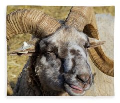 Hog Island Sheep 2 Fleece Blanket