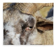 Hog Island Sheep 3 Fleece Blanket