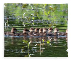 Hooded Merganser Ducklings Dwf0203 Fleece Blanket