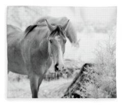 Horse In Infrared Fleece Blanket