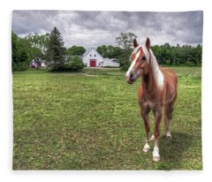 Horse In Pasture Fleece Blanket