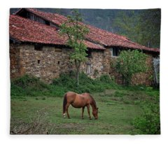 Horse In The Field Next To A Rural House Fleece Blanket