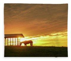 Horse In The Spotlight Fleece Blanket
