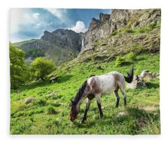 Horse On Balkan Mountain Fleece Blanket