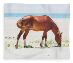 Horse On Beach Fleece Blanket