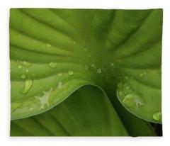 Hosta Fleece Blanket