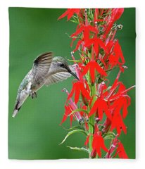 Hummer On Cardinal Flower Fleece Blanket