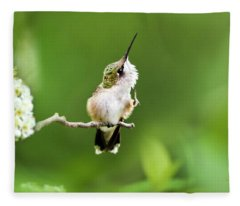 Hummingbird Flexibility Fleece Blanket