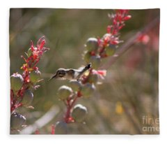 Hummingbird Flying To Red Yucca 1 In 3 Fleece Blanket