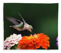 Hummingbird In Flight With Orange Zinnia Flower Fleece Blanket