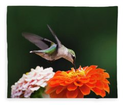 Fleece Blanket featuring the photograph Hummingbird In Flight With Orange Zinnia Flower by Christina Rollo