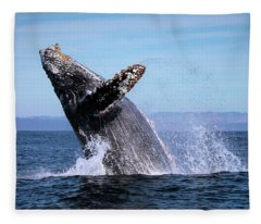 Humpback Breaching - 01 Fleece Blanket