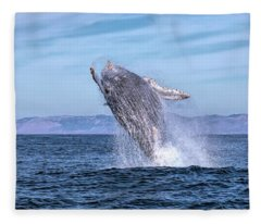 Humpback Breaching - 02 Fleece Blanket